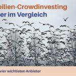 Immobilien Crowdinvesting Vergleich